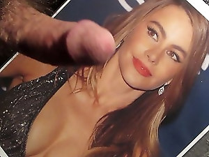 Sofia Vergara Tribute 02